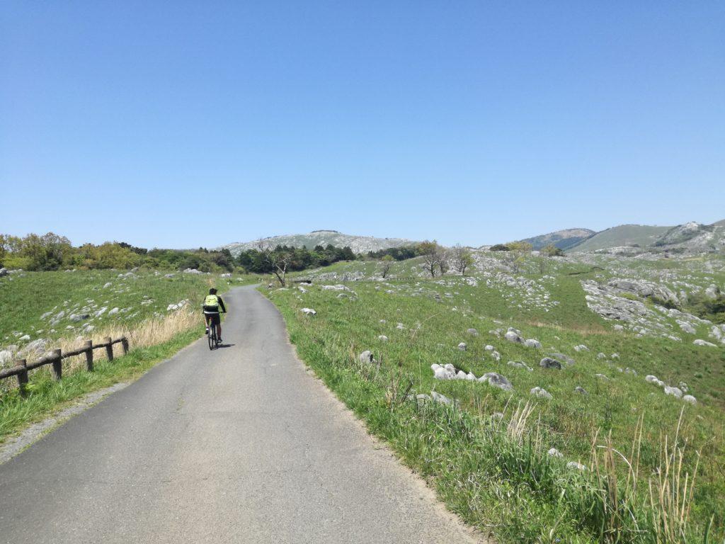 平尾台「貫山」の茶ケ床園地
