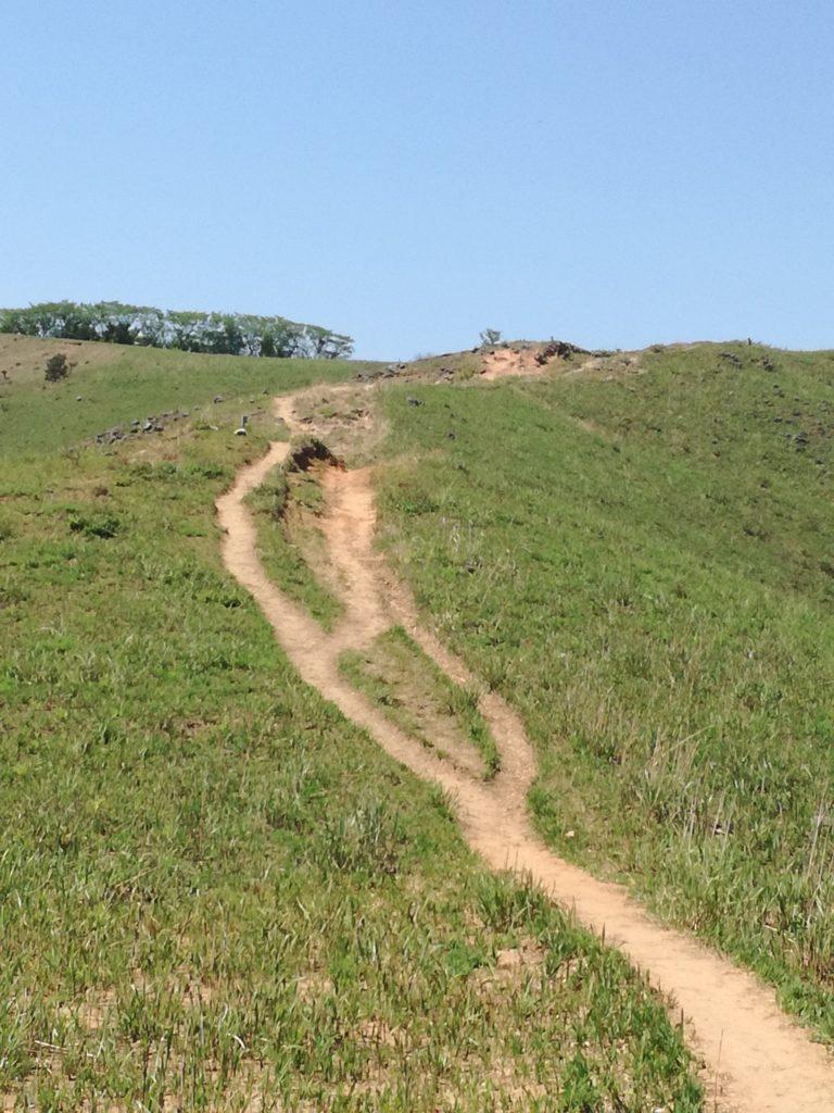 平尾台「貫山」の岩山